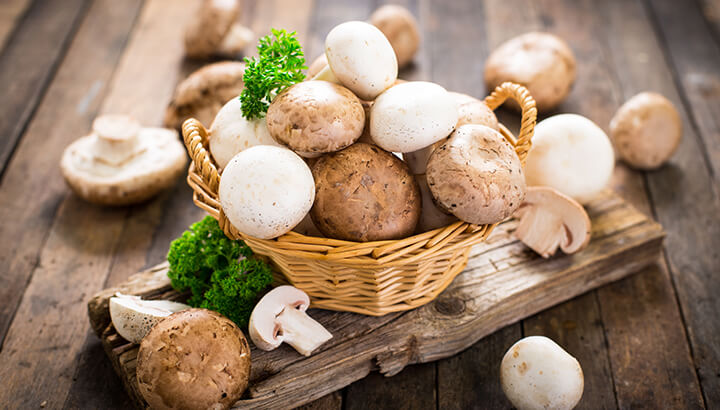 Mushrooms For Blood Pressure