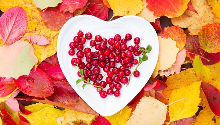 Fall Foods Cranberries