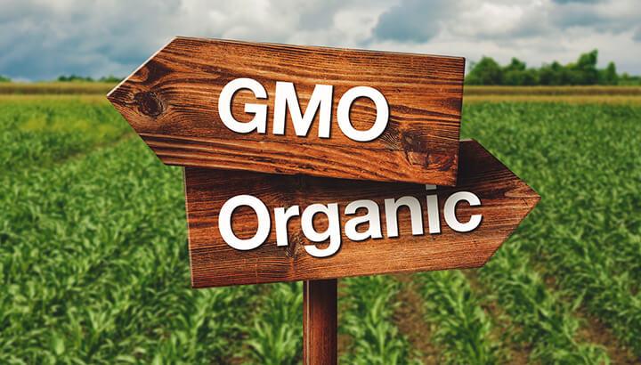 GMO Debate 2