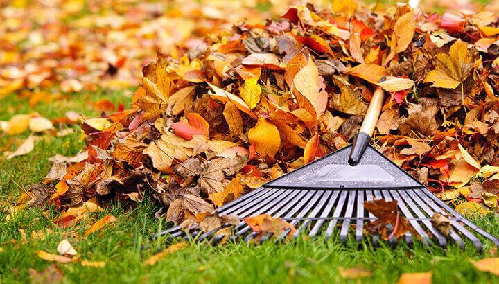 Keep In Shape Raking Leaves
