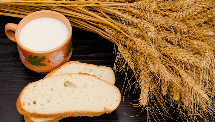 Leaky gut symptoms from bread and milk