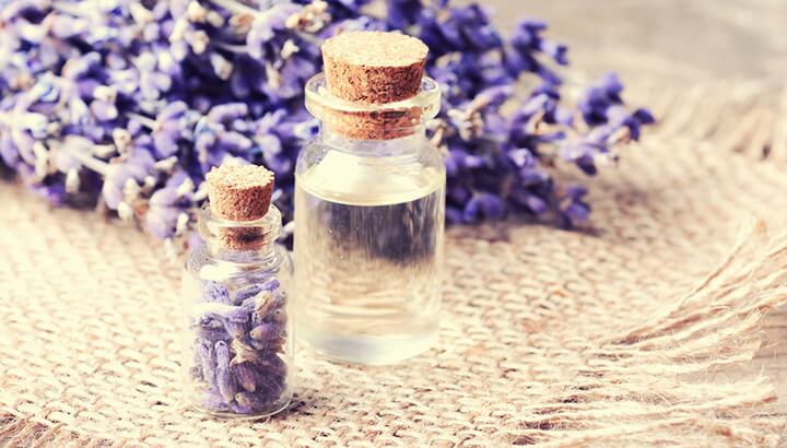 How To Reduce Anxiety With Lavender