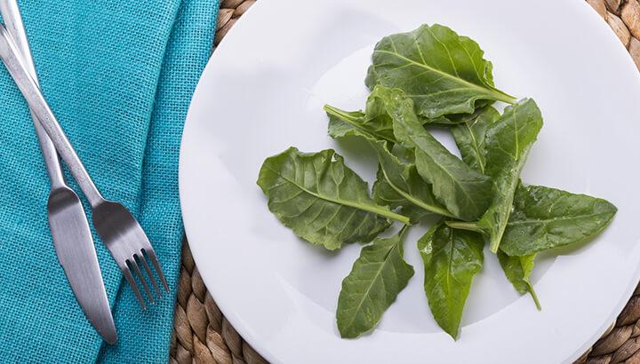 Stop Dieting 4