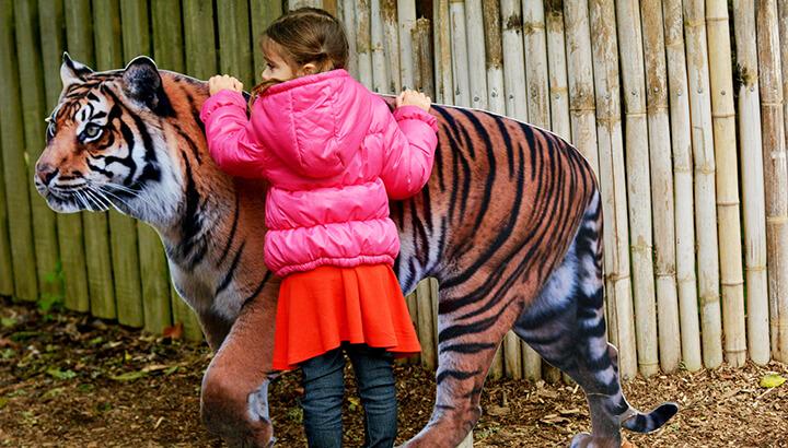 TripAdvisor Inhumane Wildlife Exhibits 2