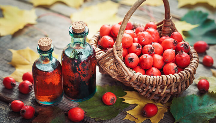 hawthorn berries tincture
