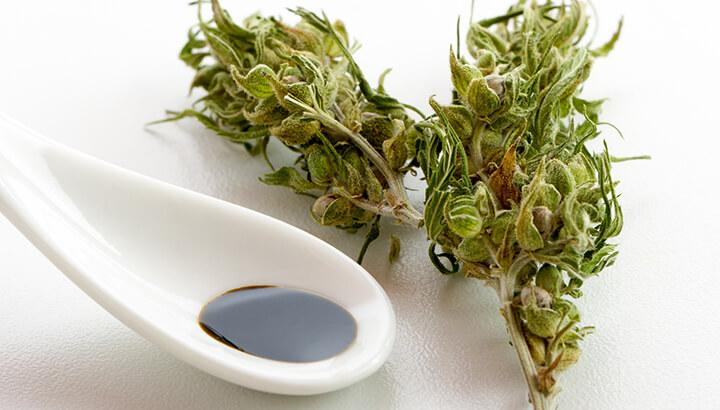 Cannabis Oil Benefits For Health