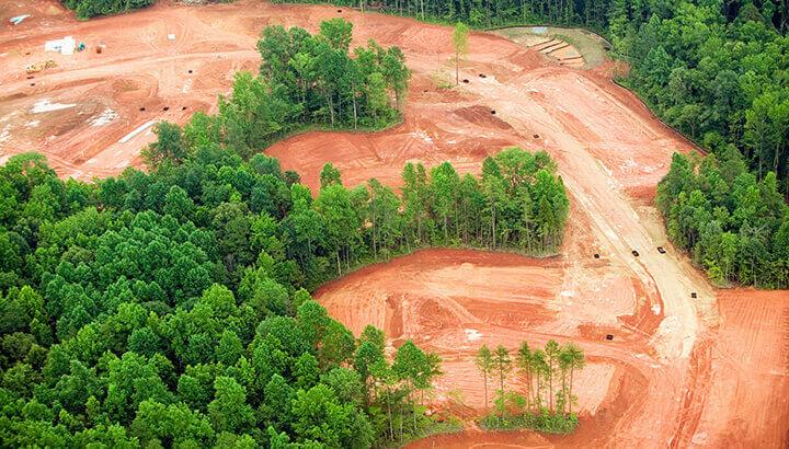 Environmental Concerns include habitat loss