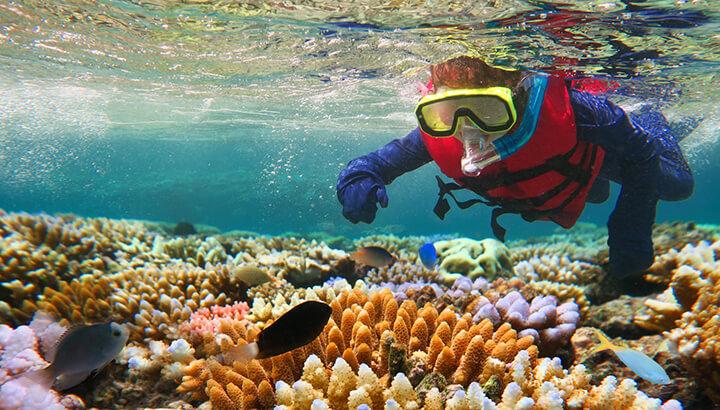 Great Barrier Reef biodiversity