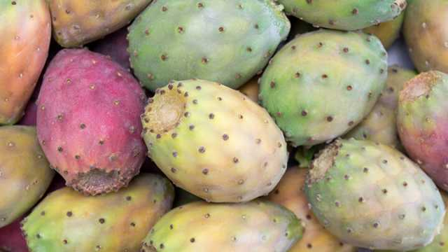 what is prickly pear and do i need to eat it