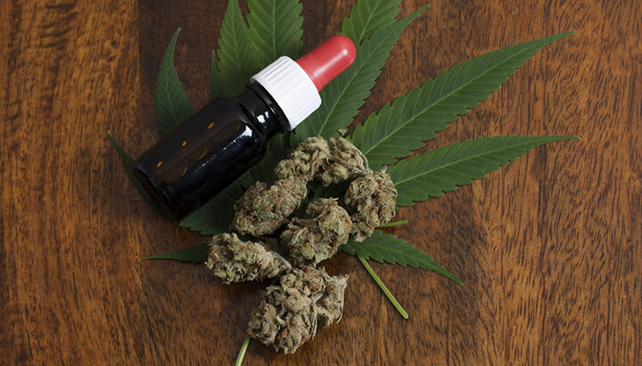 Edibles and tinctures can help autism