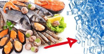 Humans are eating plastic in seafood