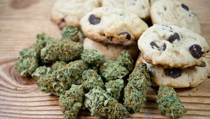 Parents give cannabis cookies to child with autism