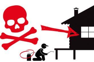 Pesticide under home kills 4 children