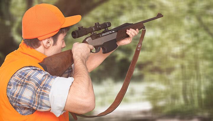 Plan will help hunting of mule deers