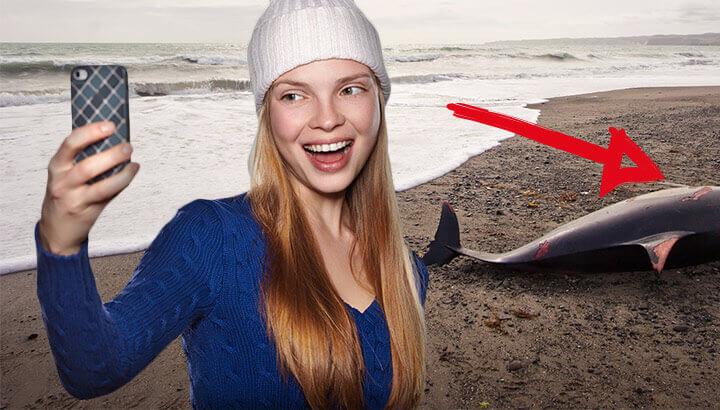 Selfies are harming wild animals