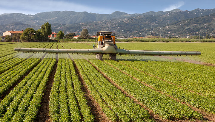Buy organic as often as possible, since pesticides are linked to health issues.