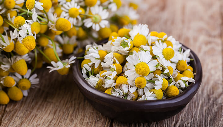 Medicinal herbs like chamomile are handy for sleep and relaxation.