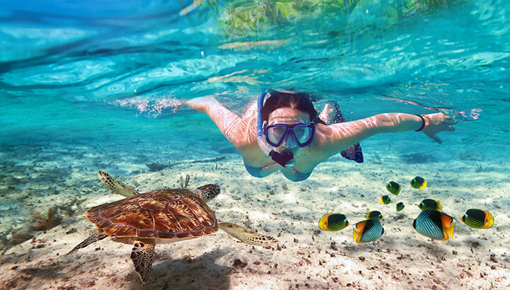 Instead of going to the zoo, try snorkeling or visit a beach.