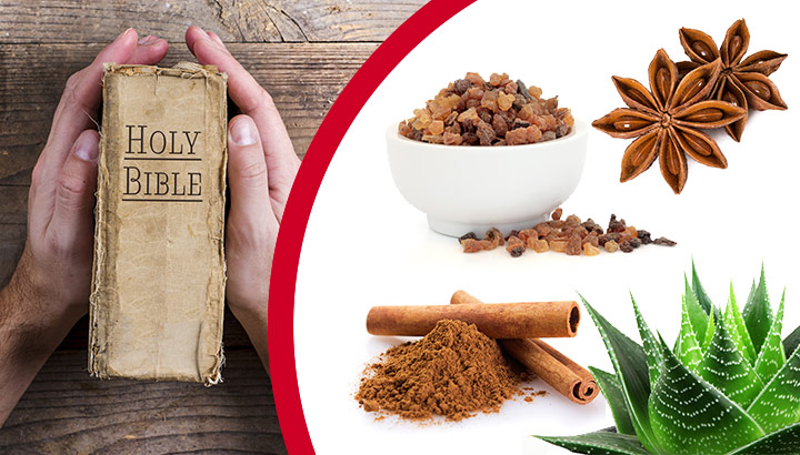 Natural remedies in the bible