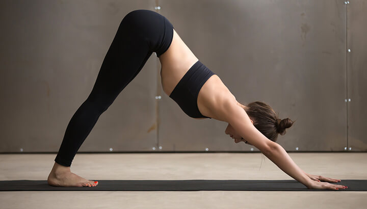 Stretch out and rest with downward-facing dog.