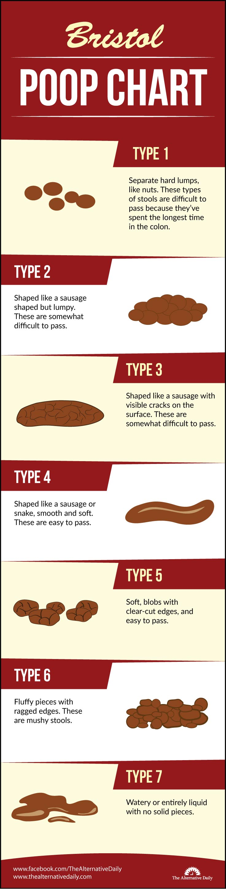 Bristol Poop Chart Which Of These 7 Types Of Poop Do You