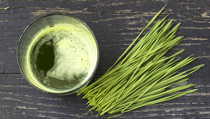 Wheatgrass contains over 90 minerals to improve overall health.