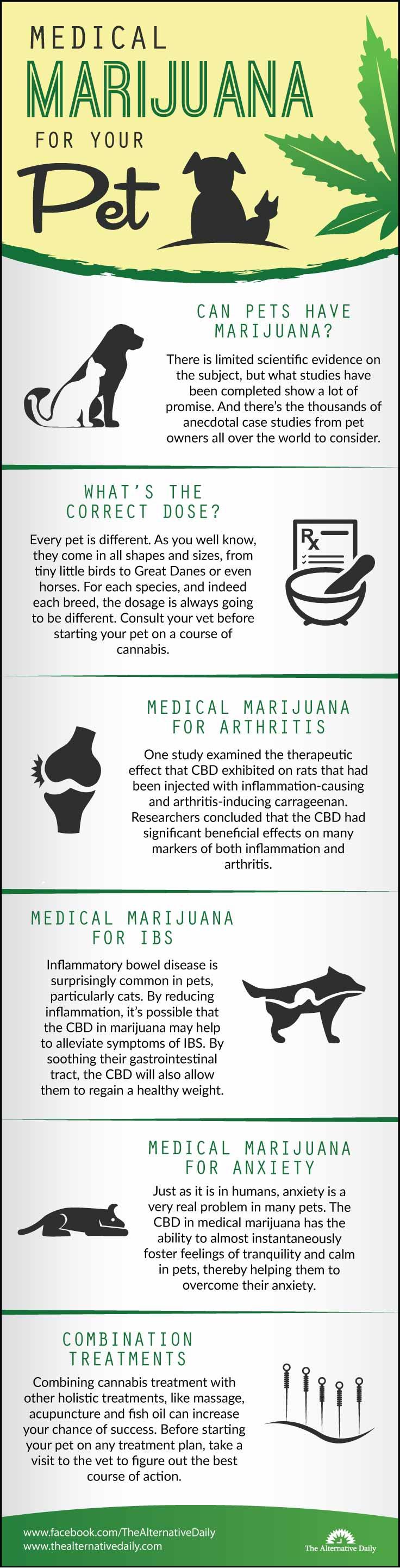 medical-marijuana-for-pets