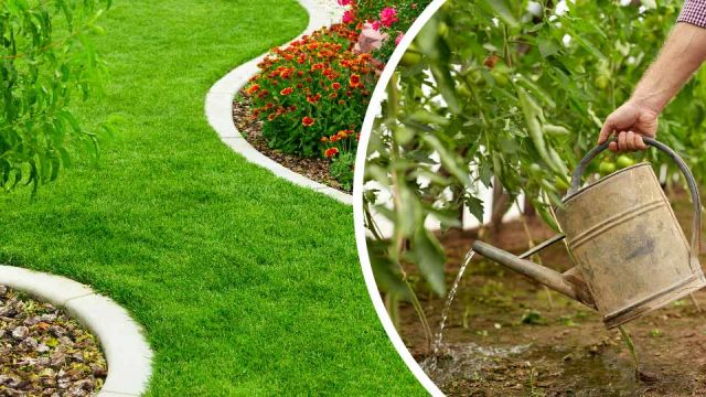 6 Amazing Benefits of Peeing In Your Yard (#5 Is Must Try)