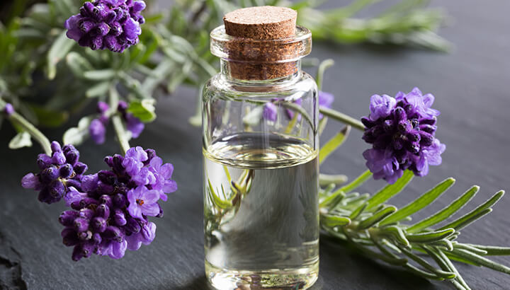 What Does Mold Smell Like >> 5 Essential Oils For Your House (And How To Use Them!)